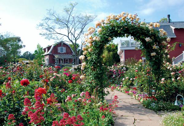 Barbra Streisand House Captivating Of Barbra Streisand Garden Photo